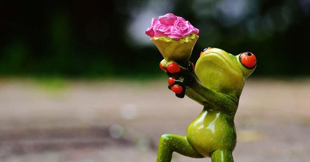 花束,挨拶,カエル,迎える